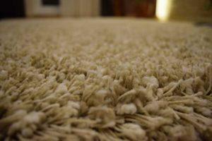 Carpet-74060545v2